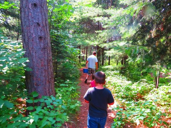 Mew Lake Campground: Path to fetch water
