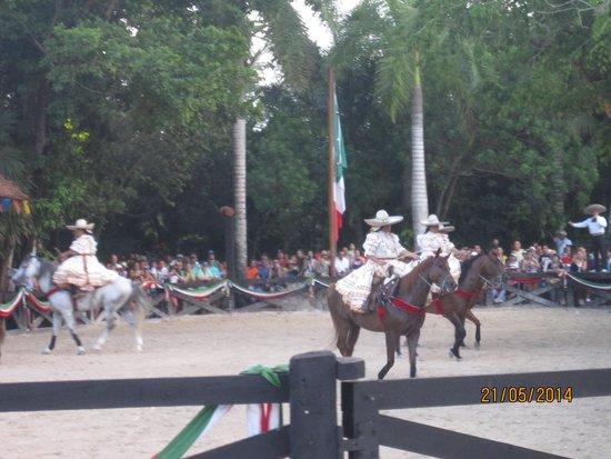 Sandos Playacar Beach Resort : baile en caballo