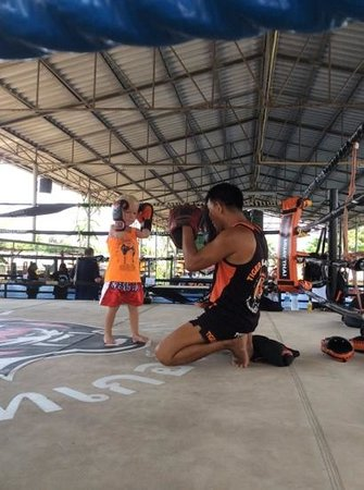 Tiger Muay Thai - Day Classes: just another training session