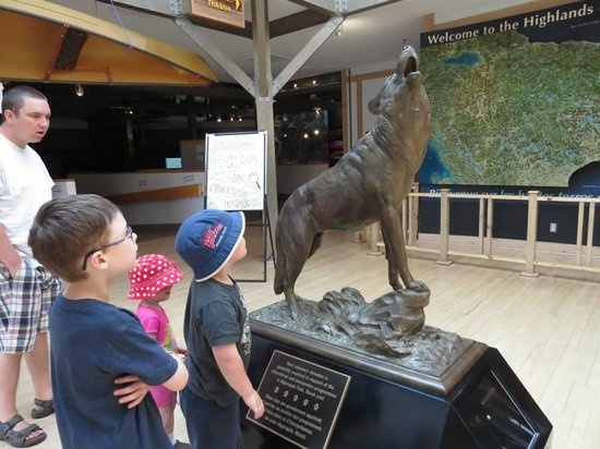Algonquin Visitor Centre: Great displays