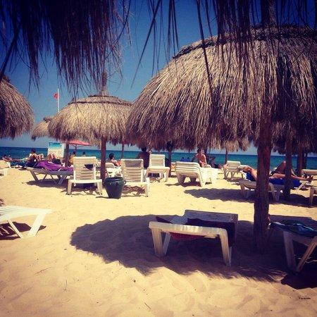 El Mouradi Beach : Ombrelloni