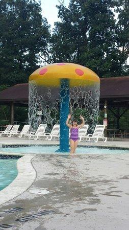 Drummer Boy Camping Resort: Pool area 2014