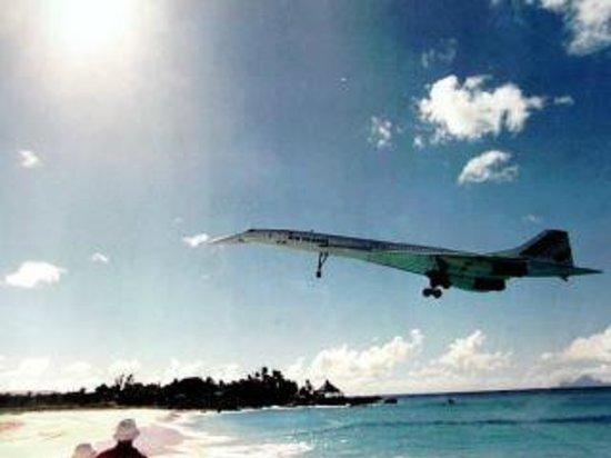 Simpson Bay Resort & Marina : Ya gotz to visit the airport beach!