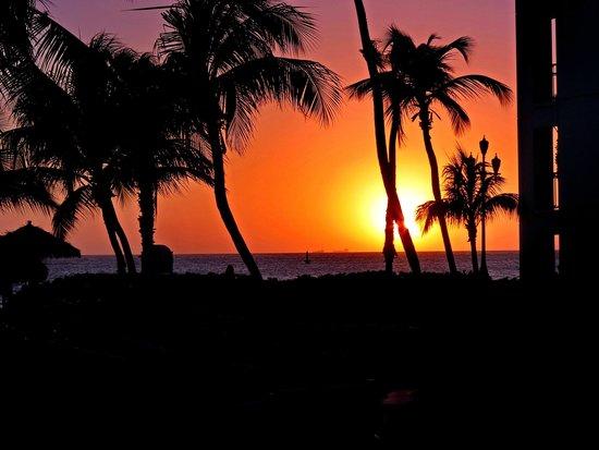 Renaissance Aruba Resort & Casino: 1