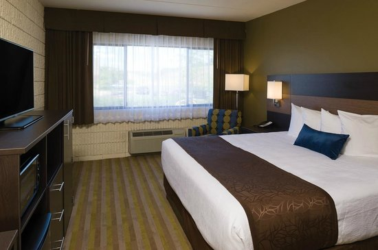 Best Western Plus University Inn: Standard single king rooms
