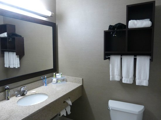 Holiday Inn Express & Suites Naples: Baño del cuarto