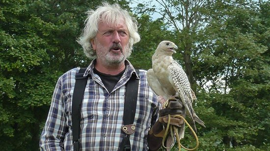 Lakeland Bird of Prey Centre: Great plumage?