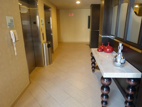 Holiday Inn Express & Suites Naples: Corredor