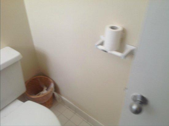 Palm Beach Oceanfront Inn : toilet paper holder broken