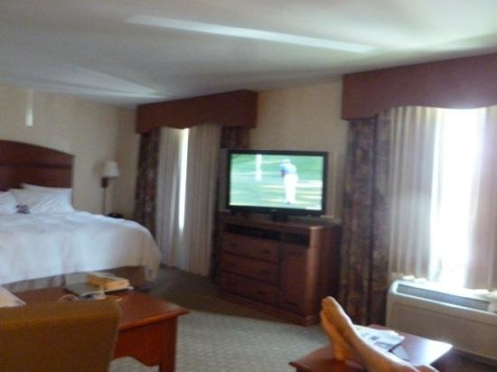 Hampton Inn & Suites Pocatello: Suite