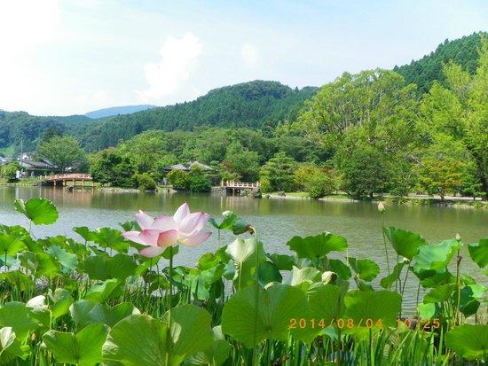Shiramizu Amidado: ここは阿弥陀堂が景色。飯山の阿弥陀堂は外側が景色どちらもいい