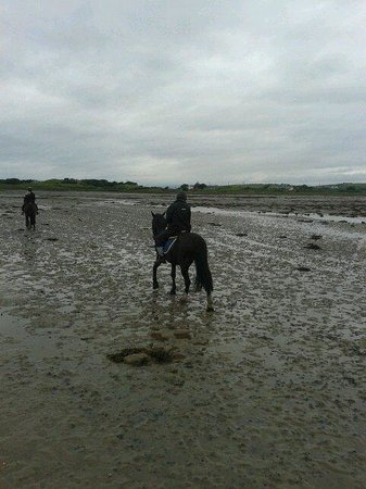 Carrowholly Stables & Trekking Centre : The strand