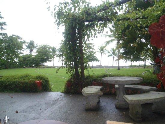 Iguana Lodge: View from main restaurant