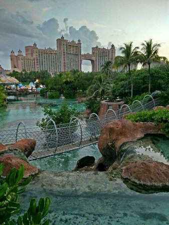 Atlantis, Royal Towers, Autograph Collection: Rope bridge (above hammerhead shark pool) in front of Royal Towers