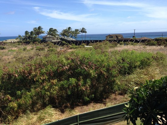 Koloa Landing Resort: Room with a view???