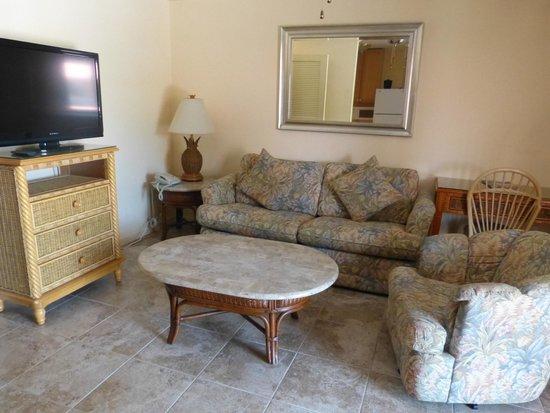 Hibiscus Suites - Sarasota / Siesta Key: Living