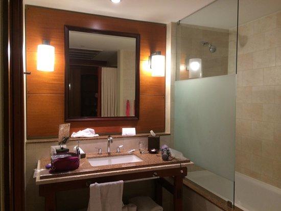 Santa Barbara Beach & Golf Resort, Curacao: Banheiro