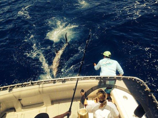 High Noon Sport Fishing: Woohoo!!!