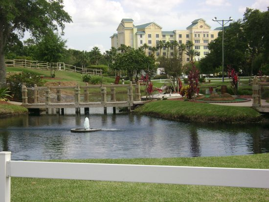 Comfort Suites Maingate East: far off shot of the hotel by the mini golf course