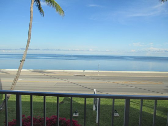 BEST WESTERN Key Ambassador Resort Inn: Ocean view