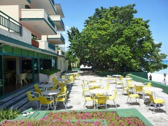 Hotel Los Delfines: Terraza del bar