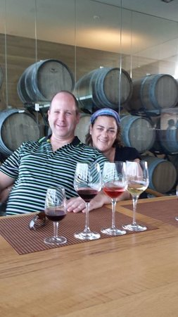 Niagara Vintage Wine Tours: SouthBrook Winery, LEEDS compliant and totally self-sustaining