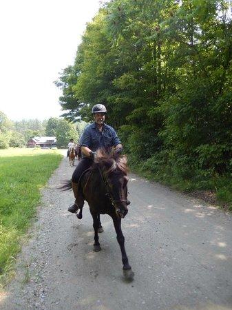 Vermont Icelandic Horse Farm: Doing a Tolt.