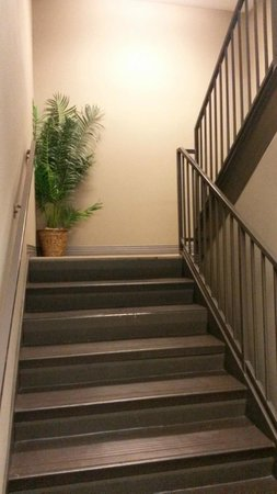 BEST WESTERN PLUS Avita Suites: Stairwell Up