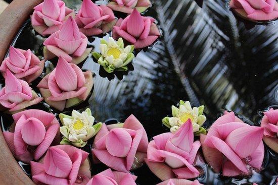 Shinta Mani Shack: stunning fresh flowers