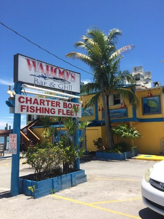 Wahoo's Bar and Grill : That's the place