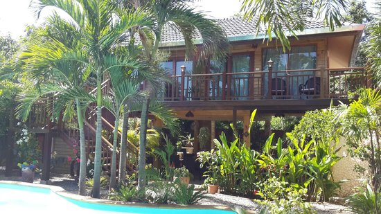 Guesthouse Liam's Suan Dok Mai : Newly build rooms (June 2014) with pool view