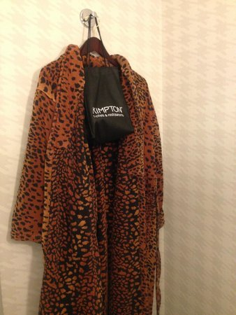 Kimpton Onyx Hotel: Complementary bathrobe and blow dryer