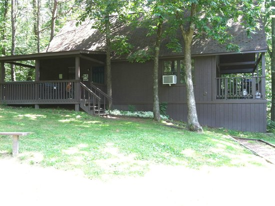 Blue Rose Cabins: Front - view from grassy area