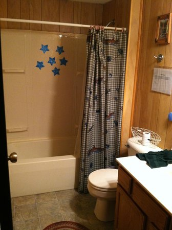Blue Rose Cabins: Bathroom (shower view) - Sulfur well water. Be prepared to stink.