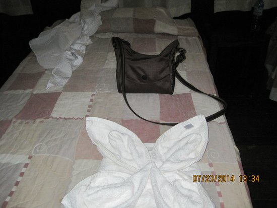 Amazonas Sinchicuy Lodge: Fancy folded towels on our beds