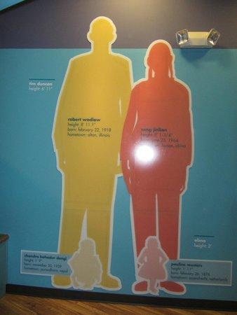 McKenna Children's Museum: Museum