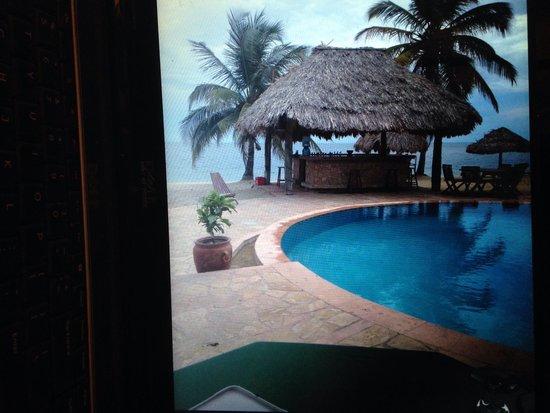 Belizean Dreams : Pool area