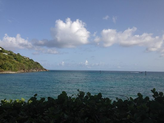 Coconut Coast Villas: view from room