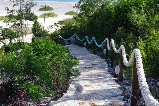 Shannas Cove Resort: walkway down to the beach