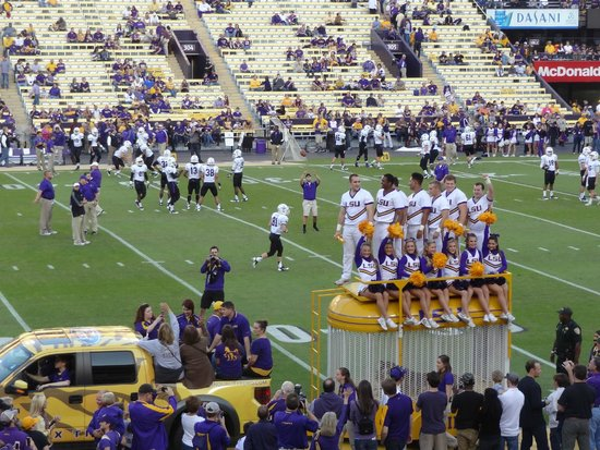 LSU Tiger Stadium: Mike the Tiger rolls around before the game starts.