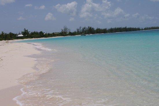 Shannas Cove Resort : beach