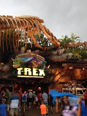 A great aquarium behind the bar picture of t rex for Restaurant t rex