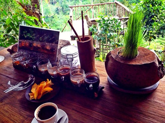 Bali Pulina Agro Tourism: A choice of coffee testing