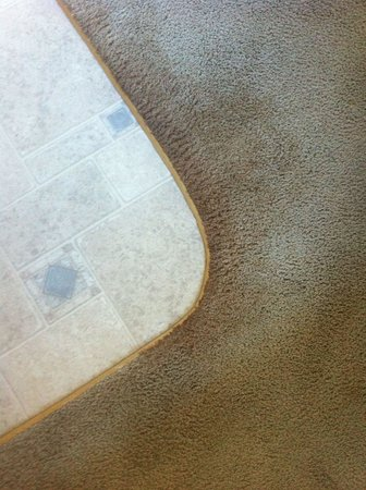 Alpine Chalet: Damp stained carpet