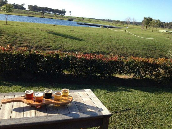 Cheeky Monkey Brewery and Cidery: The view with our tasting of beer / cider