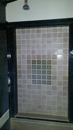 Le Meridien Jaipur: Shower area