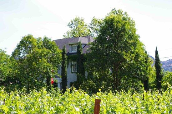 Chateau de Vie: view of the property