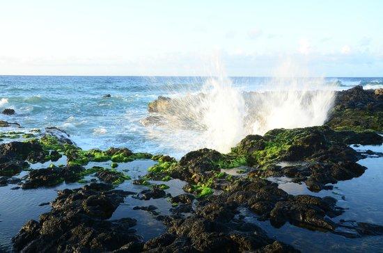 Oahu Photography Tours: Sunrise Tour