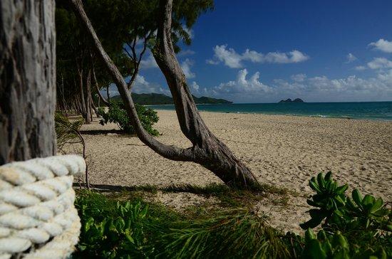 Oahu Photography Tours: Beautiful beach