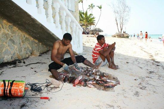 Vista Sol Punta Cana : Разделка свежепойманной рыбы